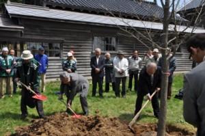 大きく育てと、ハルニレを植樹する横山会長(右)ら